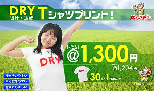 dryt1
